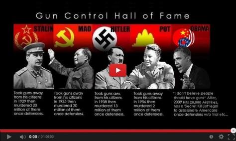 Gun Control Video