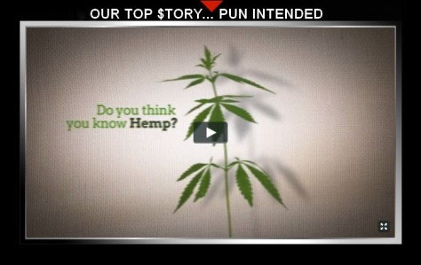 free hemp video